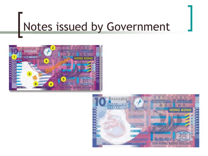 Notes issued by Government