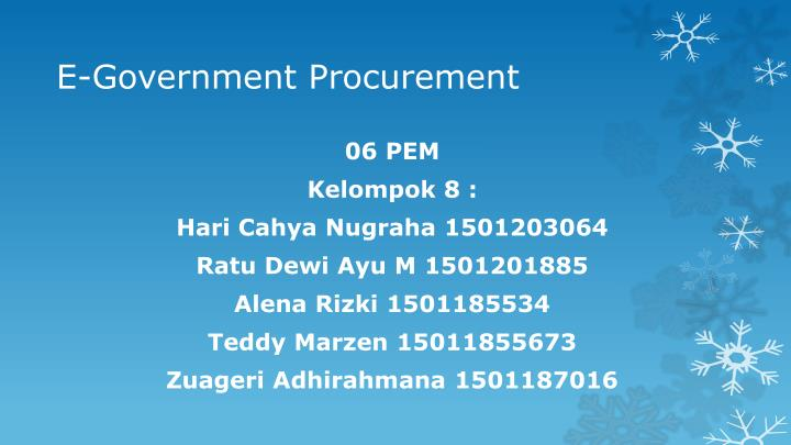 E government procurement
