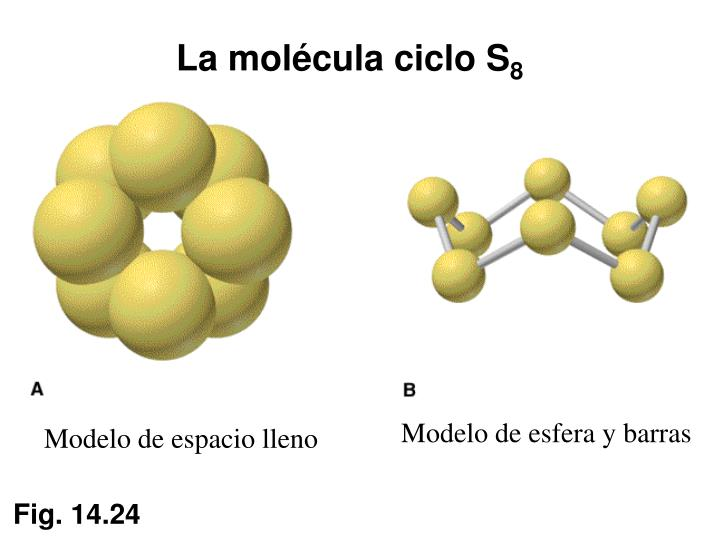 La molécula ciclo S