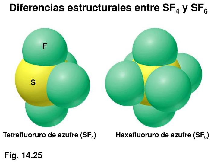 Diferencias estructurales entre SF
