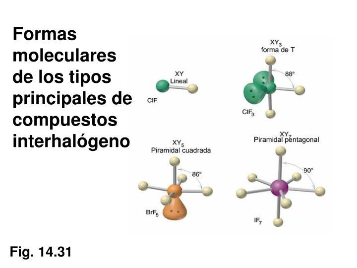 Formas moleculares de los tipos principales de compuestos interhalógeno