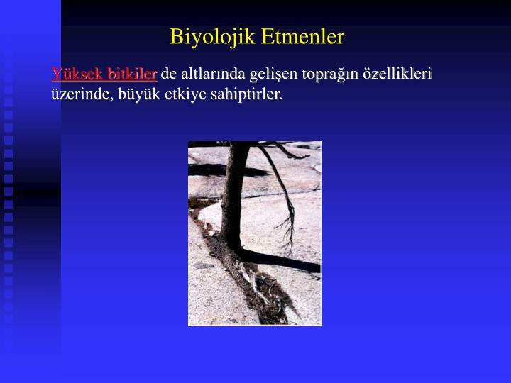 Biyolojik Etmenler