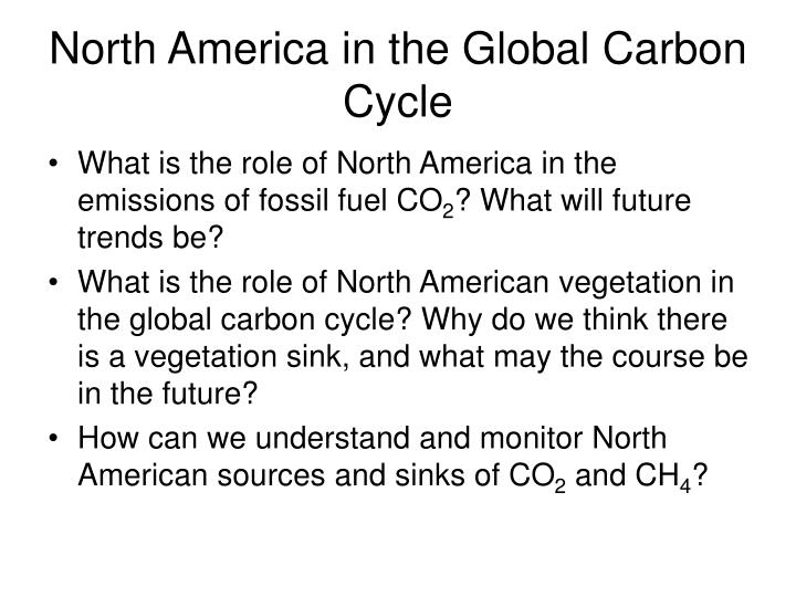 North America in the Global Carbon Cycle