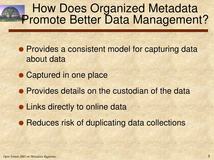 How Does Organized Metadata Promote Better Data Management?