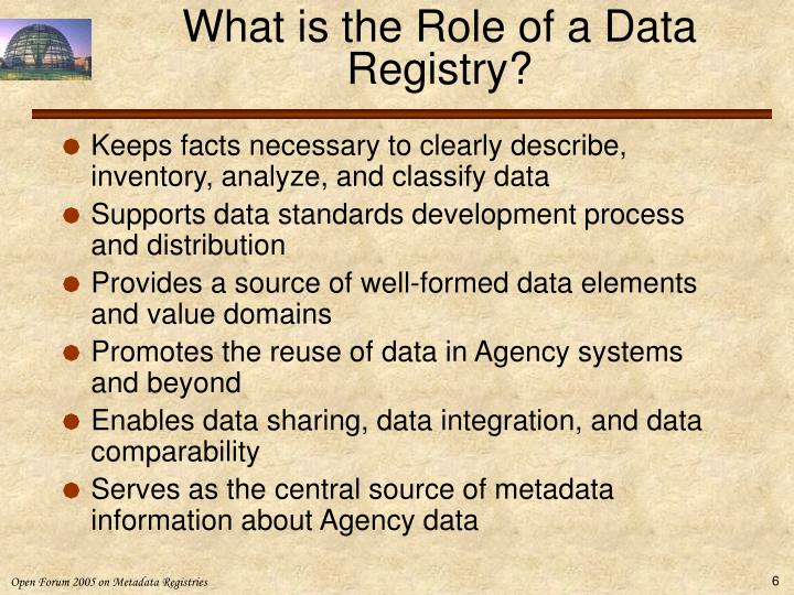 What is the Role of a Data Registry?