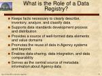 what is the role of a data registry