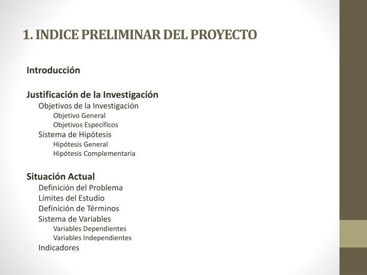 1. INDICE PRELIMINAR DEL PROYECTO