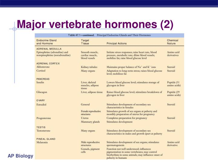 Major vertebrate hormones (2)