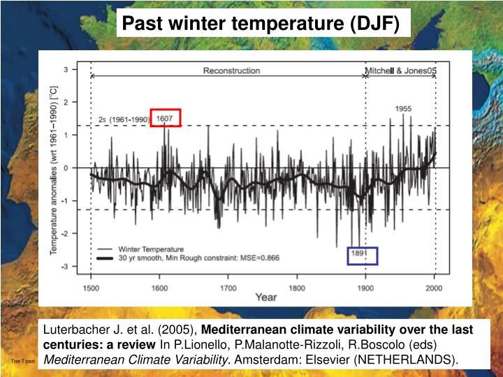 Past winter temperature (DJF)