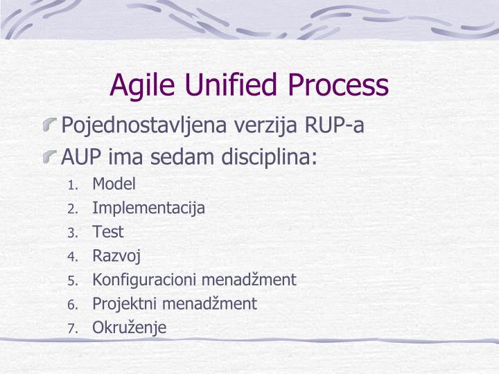 Agile Unified Process