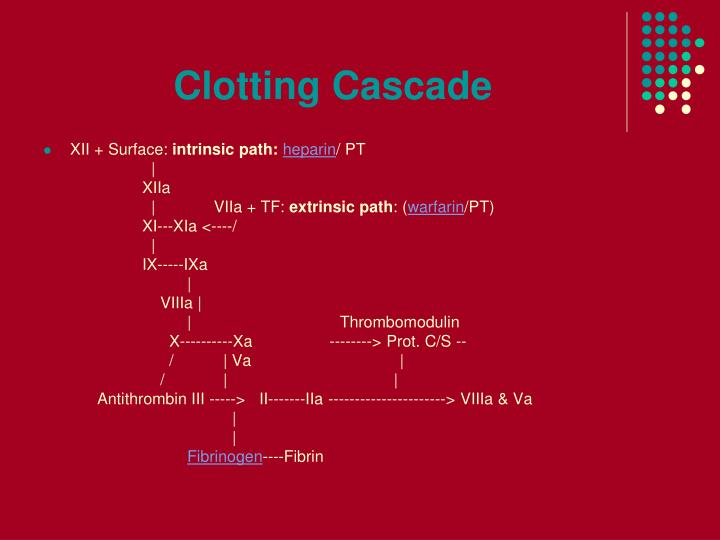 Clotting Cascade