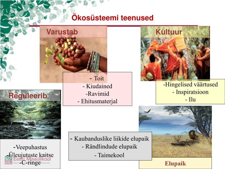 Ökosüsteemi teenused