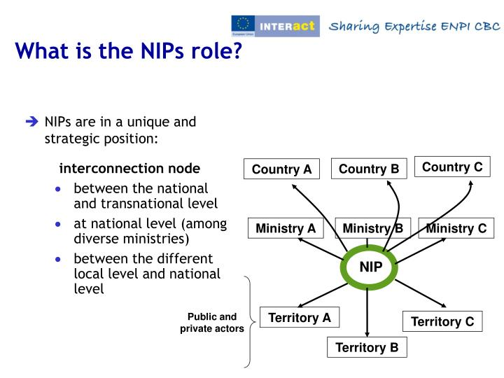 What is the NIPs role?