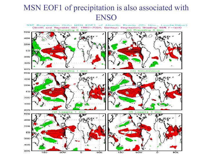 MSN EOF1 of precipitation is also associated with ENSO