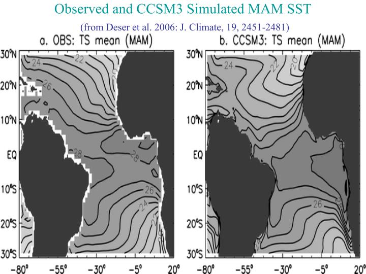 Observed and CCSM3 Simulated MAM SST