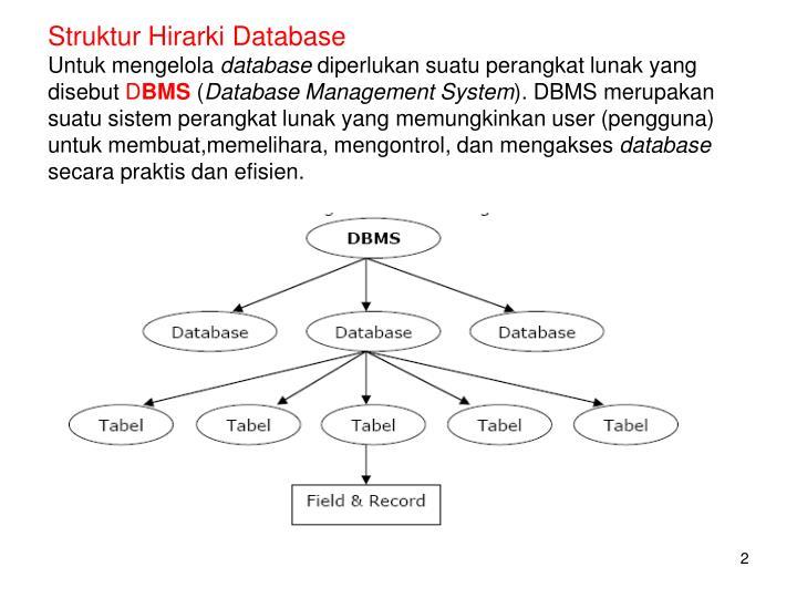 Struktur Hirarki Database