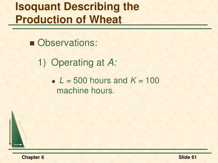 Isoquant Describing the