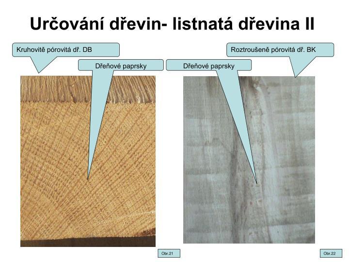 Určování dřevin- listnatá dřevina II