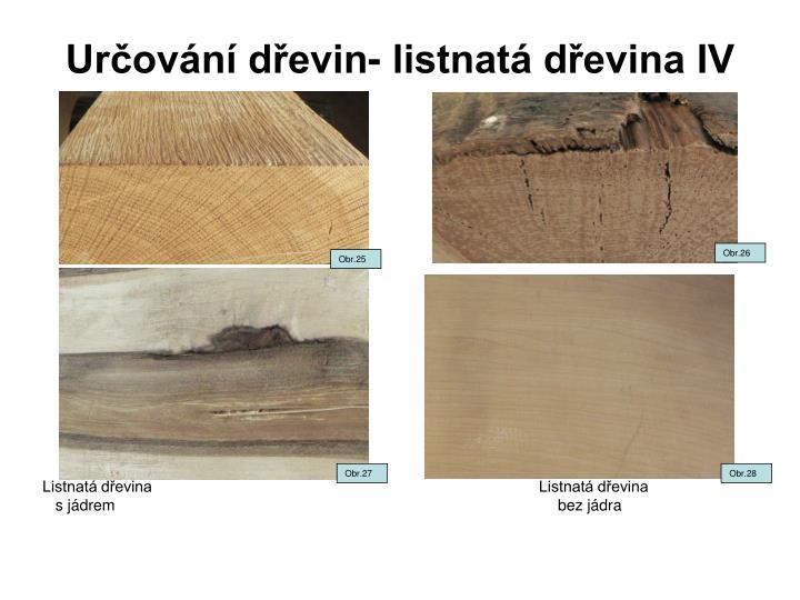 Určování dřevin- listnatá dřevina IV