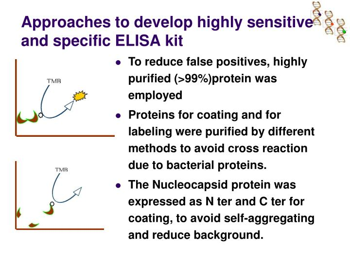 Approaches to develop highly sensitive and specific ELISA kit