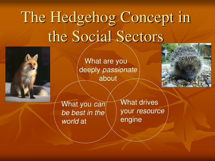 The Hedgehog Concept in the Social Sectors