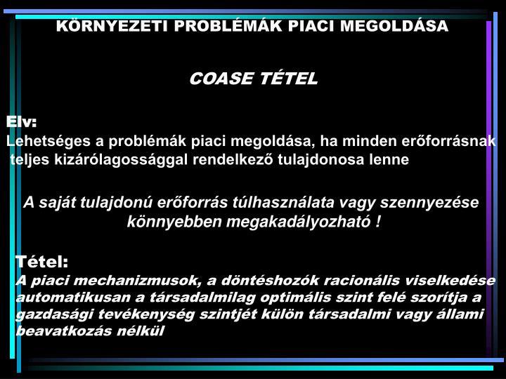 KÖRNYEZETI PROBLÉMÁK PIACI MEGOLDÁSA