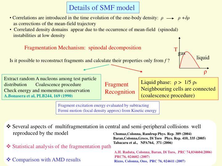 Details of SMF model