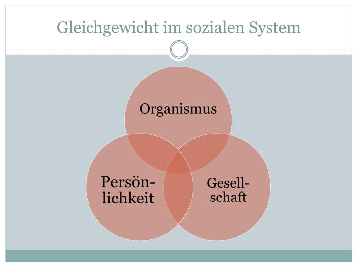 Gleichgewicht im sozialen System