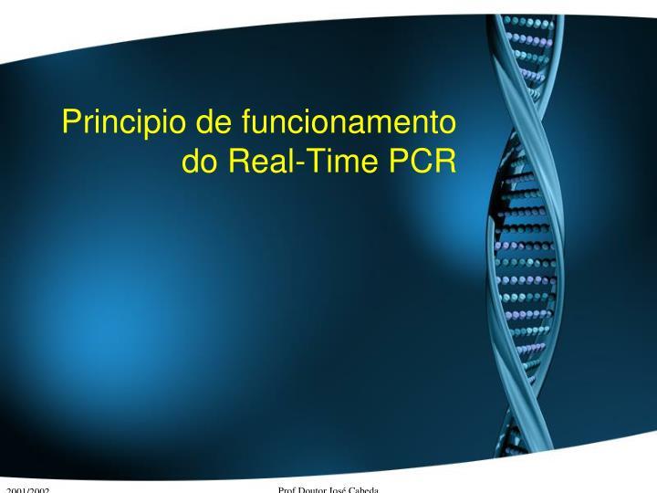 Principio de funcionamento do Real-Time PCR