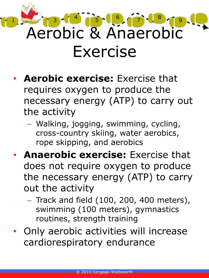 Aerobic & Anaerobic Exercise