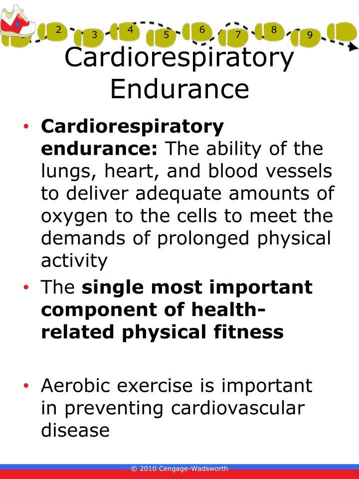 Cardiorespiratory endurance: