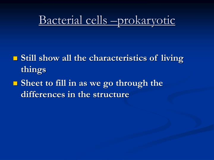 Bacterial cells –prokaryotic