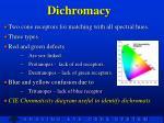 dichromacy