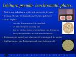 ishihara pseudo isochromatic plates1