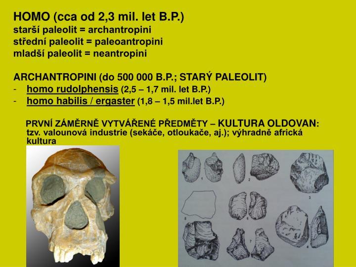 HOMO (cca od 2,3 mil. let B.P.)