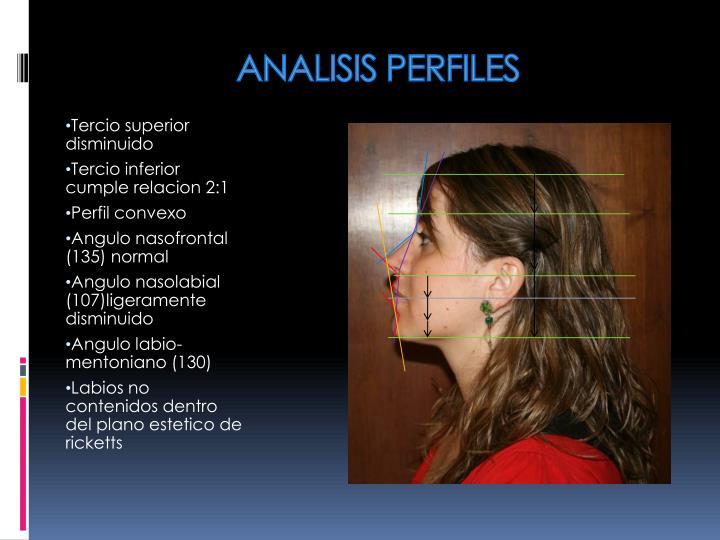 ANALISIS PERFILES