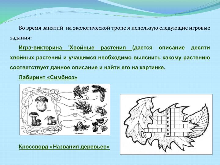 Во время занятий  на экологической тропе я использую следующие игровые задания: