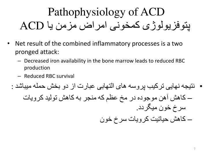 Pathophysiology of ACD