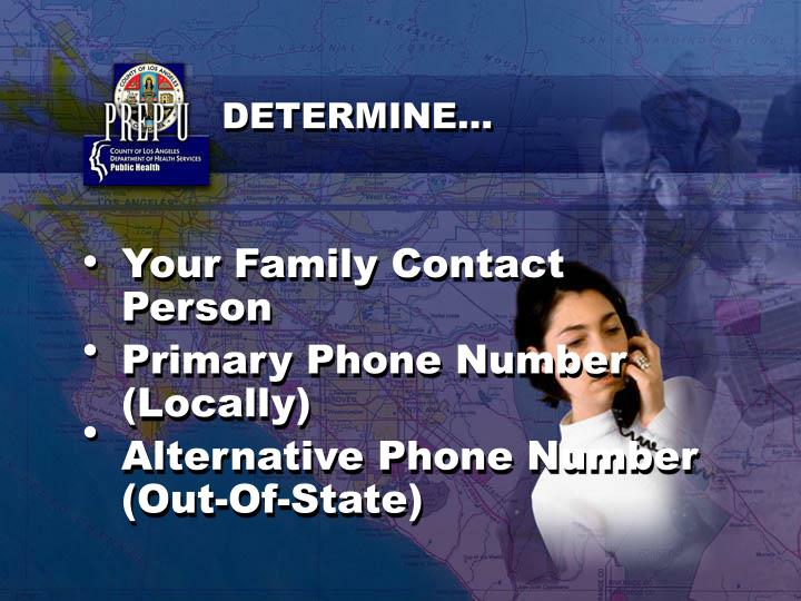 Your Family Contact Person