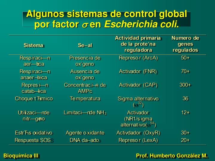 Algunos sistemas de control global por factor