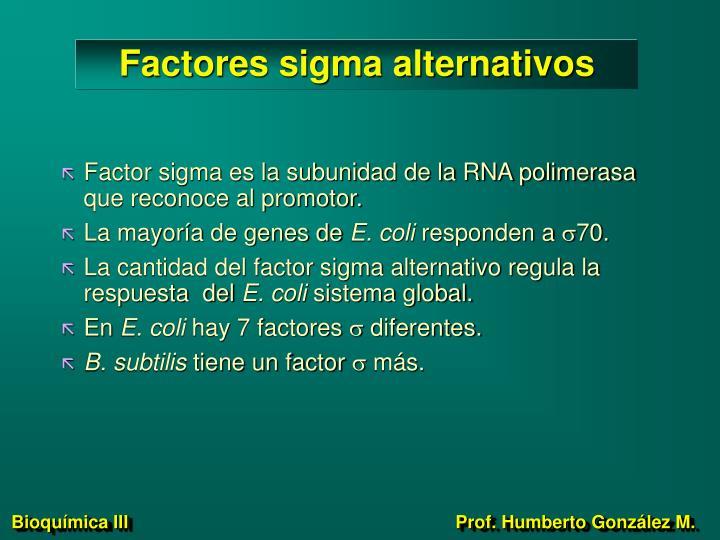 Factores sigma alternativos