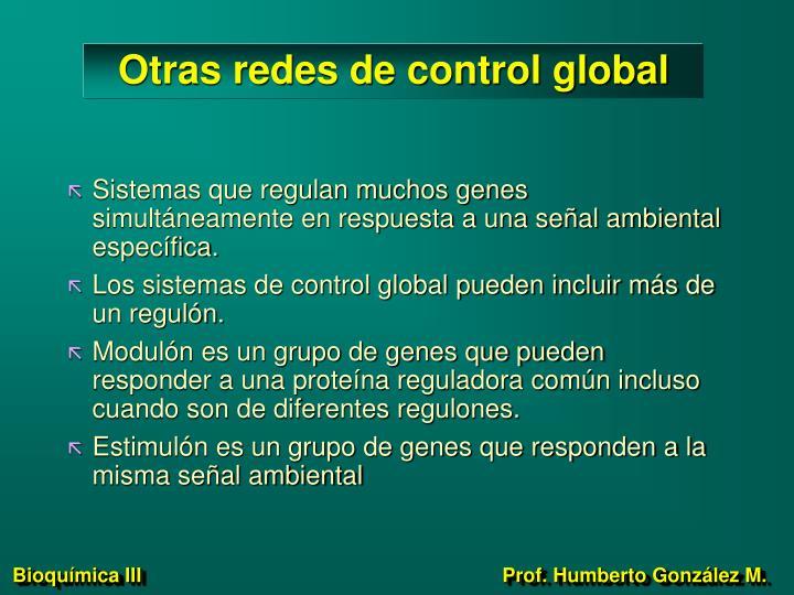Otras redes de control global