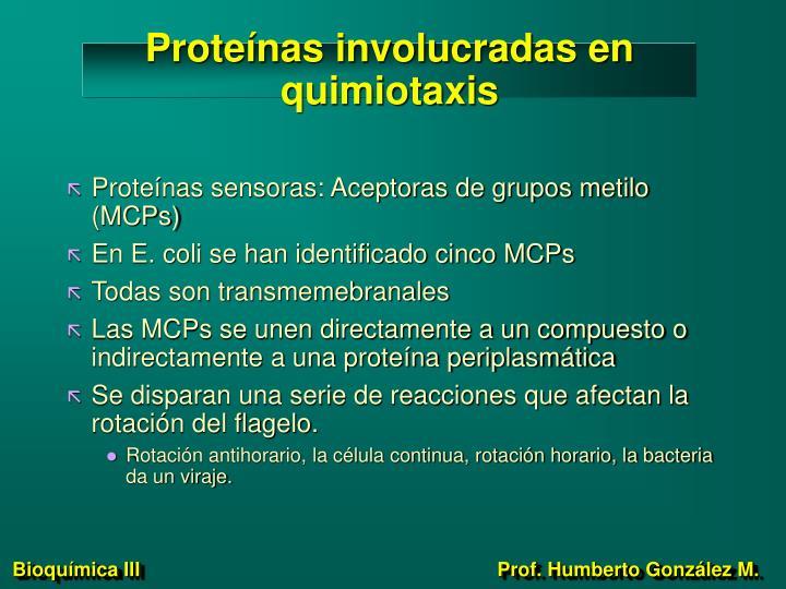 Proteínas involucradas en quimiotaxis