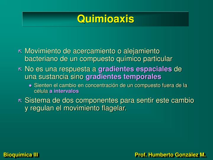 Quimioaxis