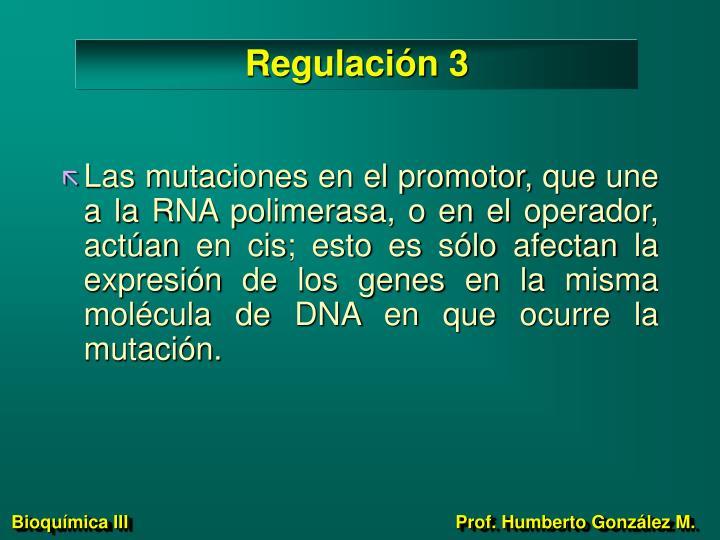 Regulación 3
