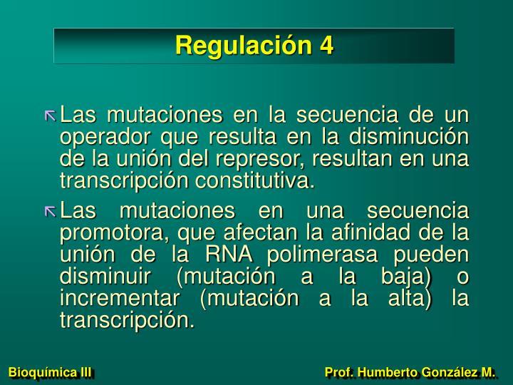 Regulación 4