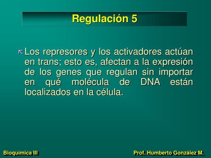 Regulación 5