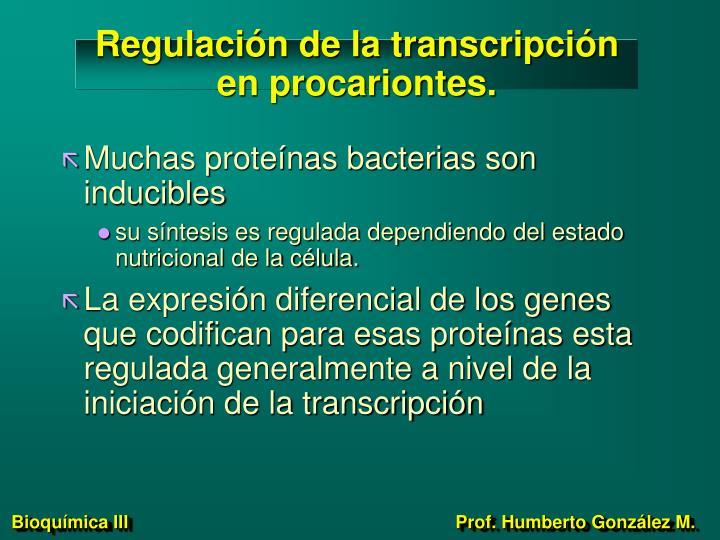 Regulación de la transcripción en procariontes.