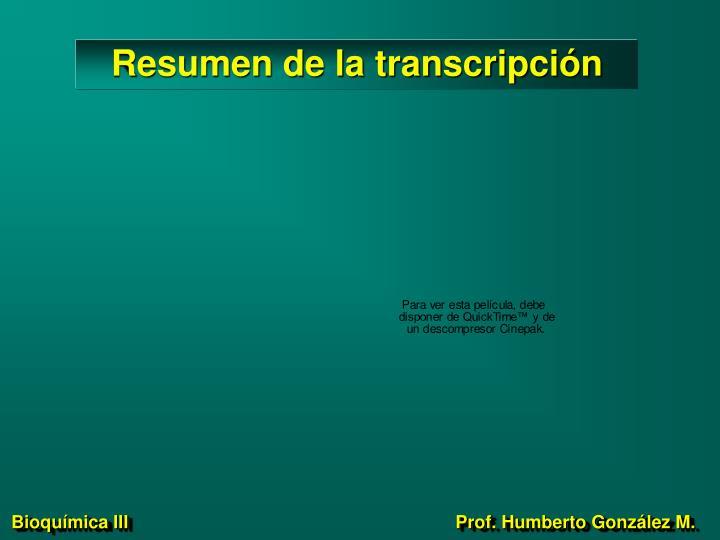 Resumen de la transcripción