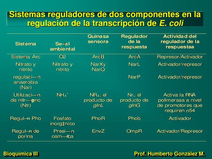 Sistemas reguladores de dos componentes en la regulación de la transcripción de
